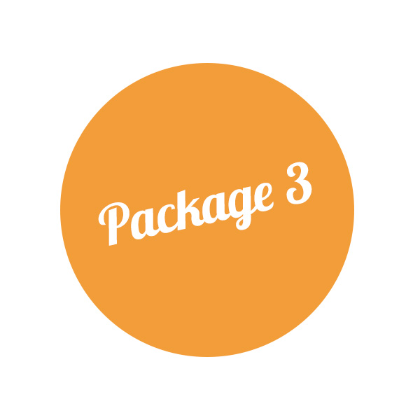 Vintage Premium Package 3 – 80 people: