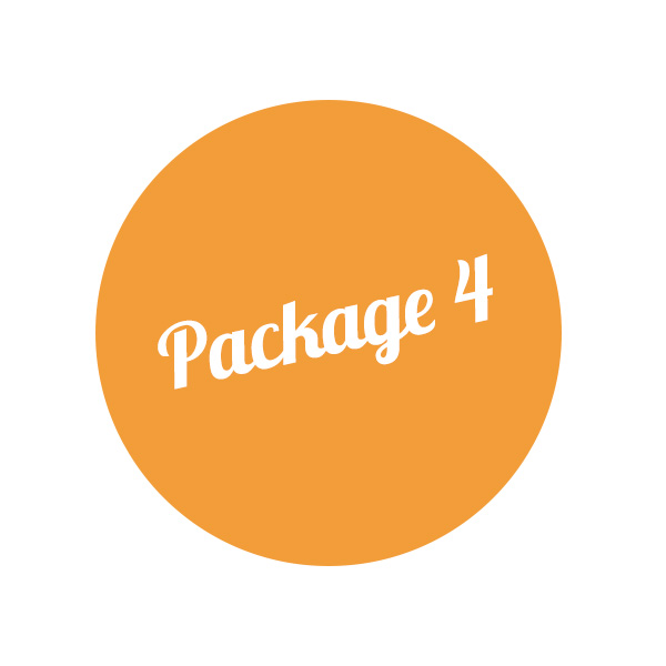 Vintage  Premium Package 4 – 100 people: